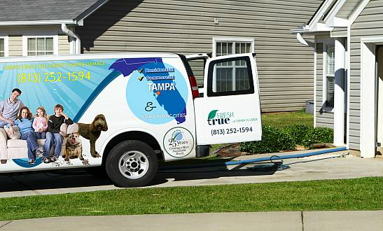 Carpet Cleaning Tampa - Rated the #1 Carpet Cleaner in Tampa
